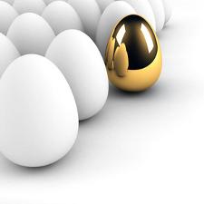 Golden Egg concept