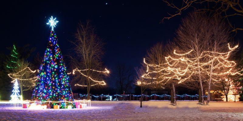 Christmas village scene